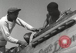 Image of Ground Crewmen of 332nd Fighter Group maintain P-51s Termoli Italy, 1944, second 20 stock footage video 65675062615