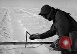 Image of Operation High Jump Antarctica, 1947, second 53 stock footage video 65675062641