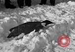 Image of United States Navy personnel Antarctica, 1947, second 25 stock footage video 65675062648