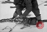 Image of United States Navy personnel Antarctica, 1947, second 4 stock footage video 65675062649