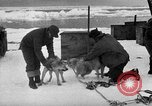 Image of United States Navy personnel Antarctica, 1947, second 20 stock footage video 65675062649