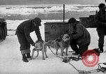 Image of United States Navy personnel Antarctica, 1947, second 21 stock footage video 65675062649
