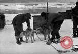 Image of United States Navy personnel Antarctica, 1947, second 22 stock footage video 65675062649