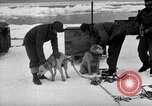 Image of United States Navy personnel Antarctica, 1947, second 24 stock footage video 65675062649
