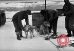 Image of United States Navy personnel Antarctica, 1947, second 25 stock footage video 65675062649