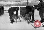 Image of United States Navy personnel Antarctica, 1947, second 28 stock footage video 65675062649
