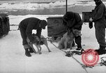 Image of United States Navy personnel Antarctica, 1947, second 29 stock footage video 65675062649