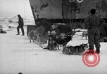 Image of United States Navy personnel Antarctica, 1947, second 62 stock footage video 65675062649
