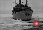 Image of United States Navy personnel Antarctica, 1947, second 39 stock footage video 65675062655