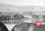 Image of 1st Cavalry Division Texas Sacramento Mountains USA, 1931, second 38 stock footage video 65675062666