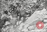 Image of 1st Cavalry Division Texas Sacramento Mountains USA, 1931, second 48 stock footage video 65675062667