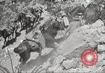 Image of 1st Cavalry Division Texas Sacramento Mountains USA, 1931, second 49 stock footage video 65675062667