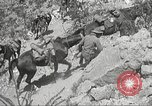 Image of 1st Cavalry Division Texas Sacramento Mountains USA, 1931, second 55 stock footage video 65675062667
