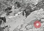 Image of 1st Cavalry Division Texas Sacramento Mountains USA, 1931, second 57 stock footage video 65675062667