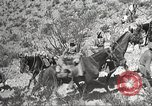 Image of 1st Cavalry Division Texas Sacramento Mountains USA, 1931, second 62 stock footage video 65675062667