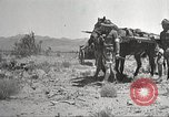 Image of 1st Cavalry Division Texas Sacramento Mountains USA, 1931, second 13 stock footage video 65675062668