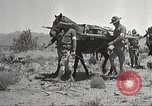 Image of 1st Cavalry Division Texas Sacramento Mountains USA, 1931, second 14 stock footage video 65675062668