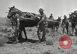 Image of 1st Cavalry Division Texas Sacramento Mountains USA, 1931, second 15 stock footage video 65675062668