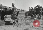 Image of 1st Cavalry Division Texas Sacramento Mountains USA, 1931, second 16 stock footage video 65675062668