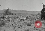 Image of 1st Cavalry Division Texas Sacramento Mountains USA, 1931, second 23 stock footage video 65675062668