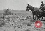 Image of 1st Cavalry Division Texas Sacramento Mountains USA, 1931, second 25 stock footage video 65675062668