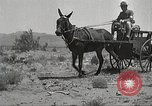 Image of 1st Cavalry Division Texas Sacramento Mountains USA, 1931, second 26 stock footage video 65675062668