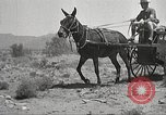 Image of 1st Cavalry Division Texas Sacramento Mountains USA, 1931, second 27 stock footage video 65675062668