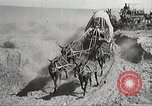 Image of 1st Cavalry Division Texas United States USA, 1931, second 25 stock footage video 65675062670