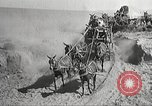 Image of 1st Cavalry Division Texas United States USA, 1931, second 37 stock footage video 65675062670