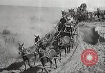 Image of 1st Cavalry Division Texas United States USA, 1931, second 38 stock footage video 65675062670