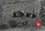 Image of Cavalry Rifle Platoon Kansas United States USA, 1933, second 10 stock footage video 65675062676
