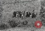 Image of Cavalry Rifle Platoon Kansas United States USA, 1933, second 12 stock footage video 65675062676