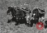 Image of Cavalry Rifle Platoon Kansas United States USA, 1933, second 13 stock footage video 65675062676