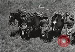 Image of Cavalry Rifle Platoon Kansas United States USA, 1933, second 16 stock footage video 65675062676