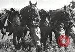 Image of Cavalry Rifle Platoon Kansas United States USA, 1933, second 27 stock footage video 65675062676