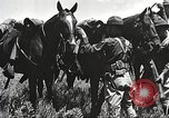 Image of Cavalry Rifle Platoon Kansas United States USA, 1933, second 29 stock footage video 65675062676