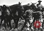 Image of Cavalry Rifle Platoon Kansas United States USA, 1933, second 34 stock footage video 65675062676