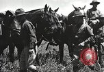 Image of Cavalry Rifle Platoon Kansas United States USA, 1933, second 37 stock footage video 65675062676