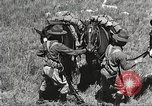 Image of Cavalry Rifle Platoon Kansas United States USA, 1933, second 44 stock footage video 65675062676