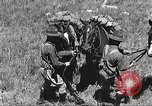 Image of Cavalry Rifle Platoon Kansas United States USA, 1933, second 45 stock footage video 65675062676