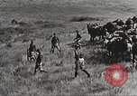 Image of Cavalry Rifle Platoon Kansas United States USA, 1933, second 60 stock footage video 65675062676