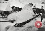 Image of Russian soldiers Eastern Front European Theater, 1943, second 17 stock footage video 65675062686