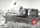 Image of Russian soldiers Eastern Front European Theater, 1943, second 25 stock footage video 65675062686