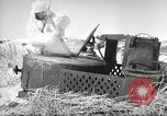 Image of Russian soldiers Eastern Front European Theater, 1943, second 28 stock footage video 65675062686