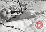 Image of Russian soldiers Eastern Front European Theater, 1943, second 40 stock footage video 65675062686