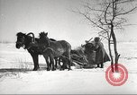 Image of Russian soldiers Eastern Front European Theater, 1943, second 44 stock footage video 65675062686