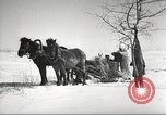 Image of Russian soldiers Eastern Front European Theater, 1943, second 46 stock footage video 65675062686