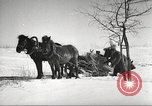 Image of Russian soldiers Eastern Front European Theater, 1943, second 47 stock footage video 65675062686