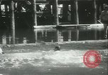 Image of log-rolling championship Port Townsend Washington USA, 1937, second 52 stock footage video 65675062689