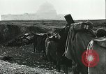 Image of German officials Tunisia North Africa, 1942, second 58 stock footage video 65675062708